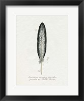Found Feather II Framed Print