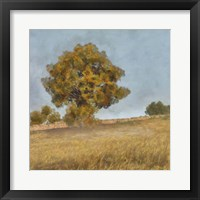Autumn's Tranquility II Framed Print