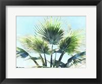 Pleasant Palms II Framed Print