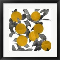 Shadow Branch I Framed Print