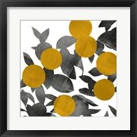 Shadow Branch II Framed Print