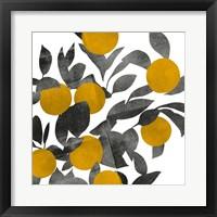 Shadow Branch III Framed Print