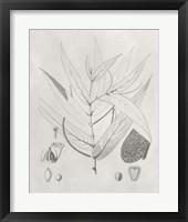Vintage Leaves IV Framed Print