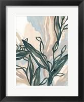 Seaweed Drift II Framed Print