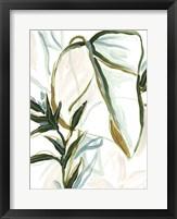 Tropical Impromptu III Framed Print