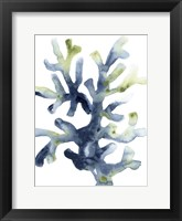Liquid Coral I Framed Print
