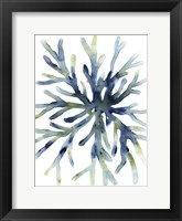 Liquid Coral II Framed Print