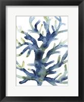 Liquid Coral III Framed Print