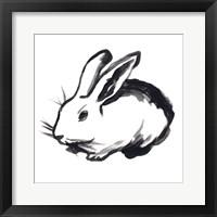 Winter Rabbit II Framed Print