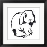 Winter Rabbit III Framed Print