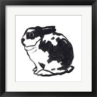 Winter Rabbit IV Framed Print
