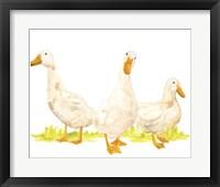 Quack Squad I Framed Print