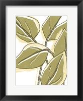 Tropical Offset I Framed Print