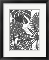 Palm Shadows I Framed Print