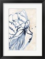 Water Shells I Framed Print