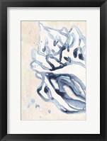 Water Shells II Framed Print