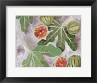 Decorative Fig II Framed Print