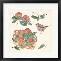 Basket with Fruit II Framed Print