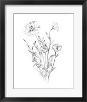 Wild Bunch I Framed Print