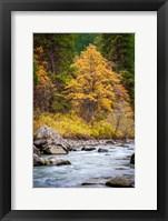 Framed Autumn Across The River