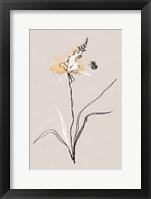 Summer Plant 1 Framed Print