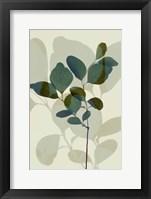 Green Leaves 7 Framed Print