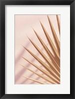 Pastel Fan 4 Framed Print