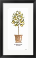 Life and Lemons Framed Print