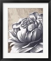 Charming Floral II Framed Print