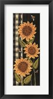 Farmhouse Sunflowers II Framed Print
