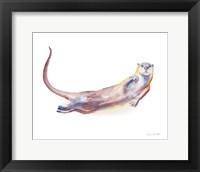 Swimming Otter I Framed Print