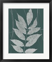 Enchanted Fall Cyanotype IX Framed Print