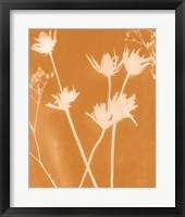 Enchanted Fall Cyanotype I Framed Print