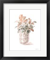 Modern Flora II Framed Print