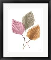 Framed Fan Palms