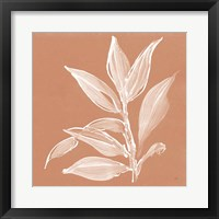 Leaf Study I Pheasant Framed Print