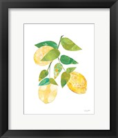 Summer Lemons I Framed Print