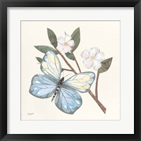 In the Garden Butterfly Framed Print