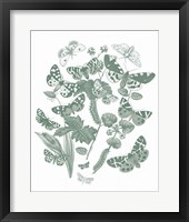 Butterfly Bouquet IV Sage Framed Print