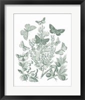 Butterfly Bouquet II Sage Framed Print