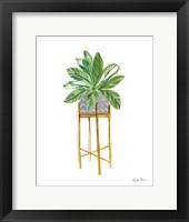 Green House Plants I Framed Print