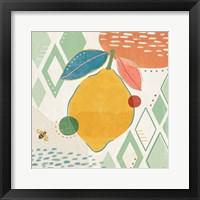 Fruit Frenzy VI Framed Print