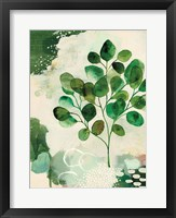 Nature Story III Framed Print