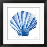 Scallop Shell Sq Framed Print