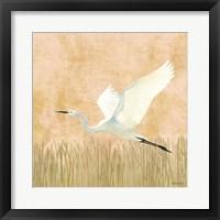 Egret Alighting II Flipped Framed Print