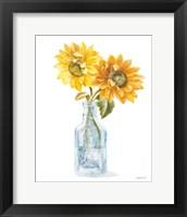 Fresh Cut Sunflowers I Framed Print