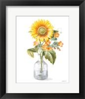 Fresh Cut Sunflowers II Framed Print