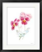 Color of Spring IV Framed Print