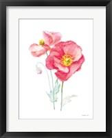 Color of Spring III Framed Print