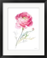 Color of Spring I Framed Print